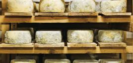 Jak si doma vyrobit sýry všemožných druhů